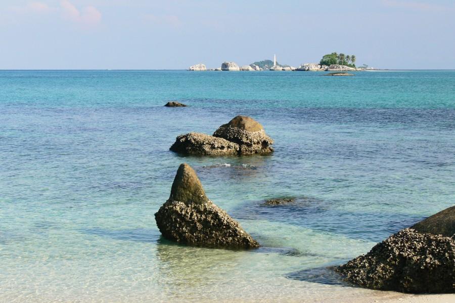 Lengkuas Belitung Go Belitung