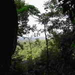 Bukit Paramon Air Selumar Belitung Indonésie