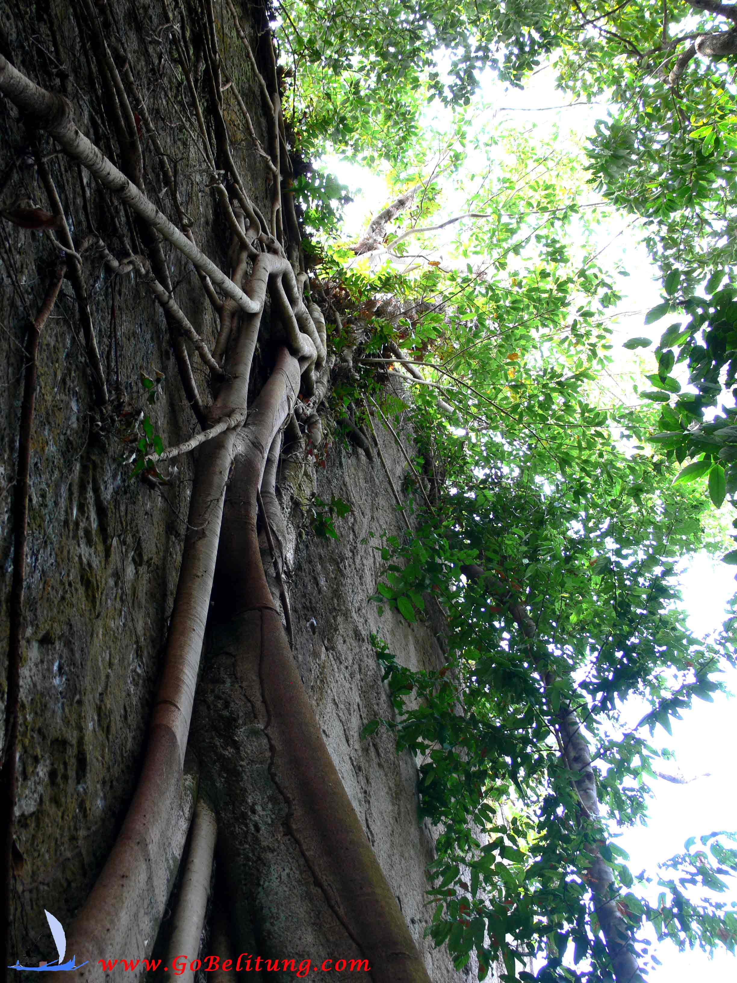 Bukit Paramon Belitung Go Belitung