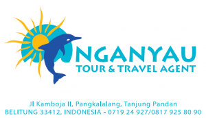 Nganyau Tour & Travel Agent