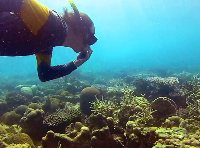 Pascal en apnee Belitung Indonesie